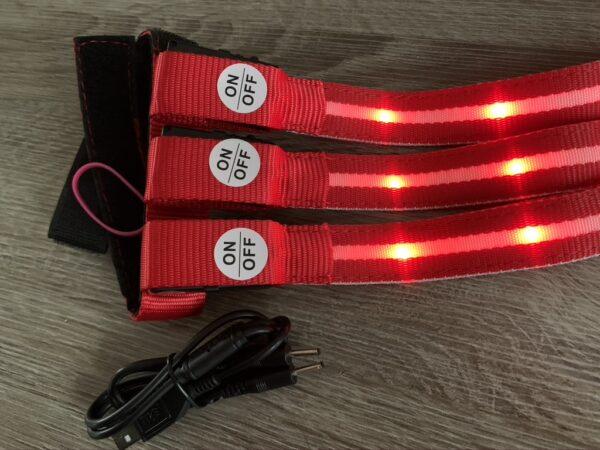 LED lys til hale rødt